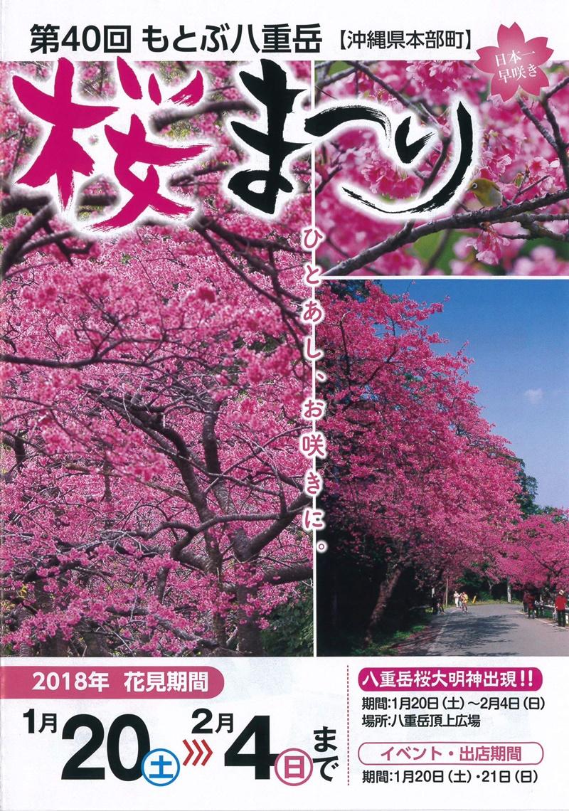 【2019】沖繩賞櫻攻略,嚴選6處|本部八重岳櫻花祭